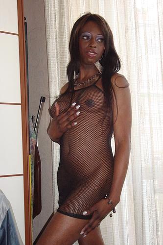 Trans Brenda